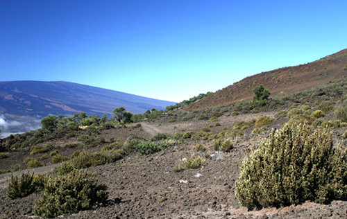 saddle between Mauna Kea and Mauna Loa